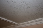 A fuzzy mold that continually grows on the ceiling throughout the entire house, even though it has been washed with bleach several times.jpg